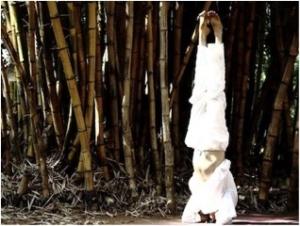 yogasutrashala1
